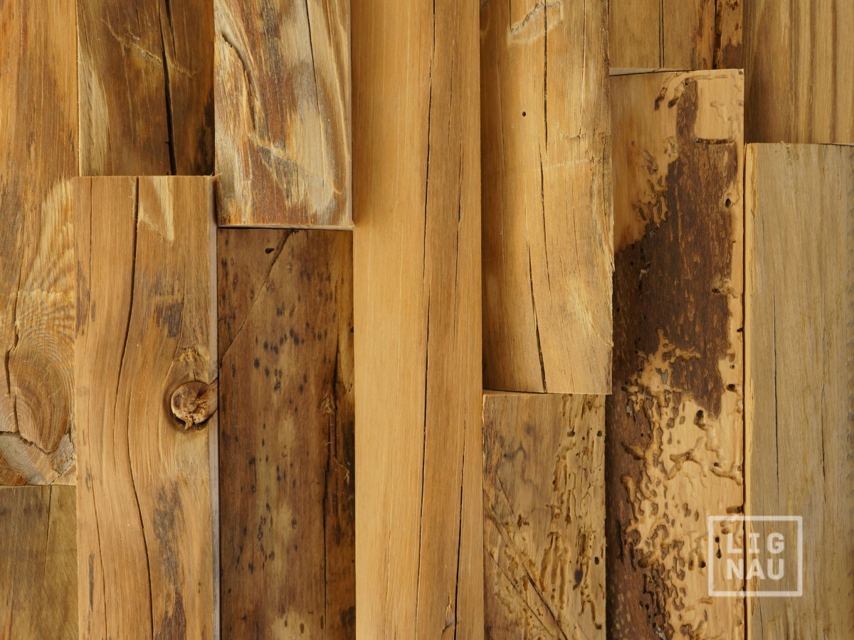 Old Wall Paneling : Antique wall cladding reclaimed wood paneling recycled d